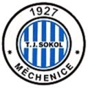 mechenice